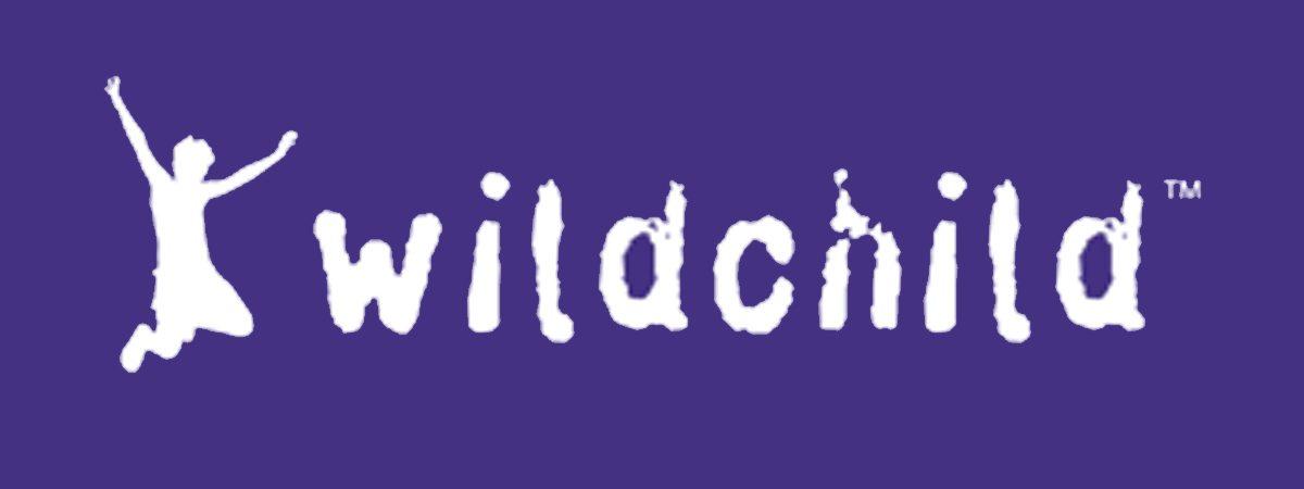 Wildchild Activity Animation Workshops